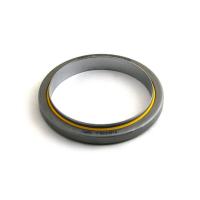 1809964-FP - International Rear Crankshaft Seal with Sleeve